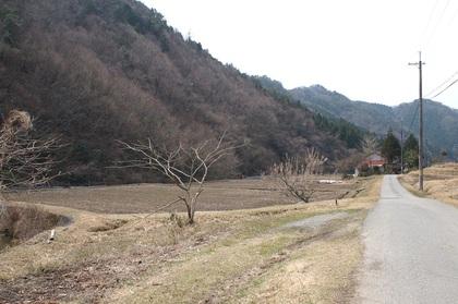 Photo01_4