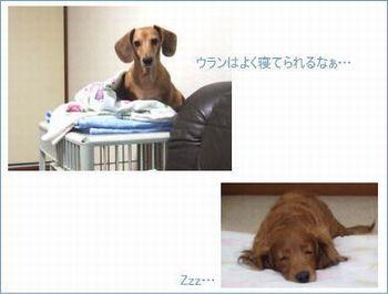 Photo01_3_1
